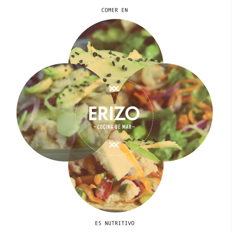 Erizo - Cocina de Mar
